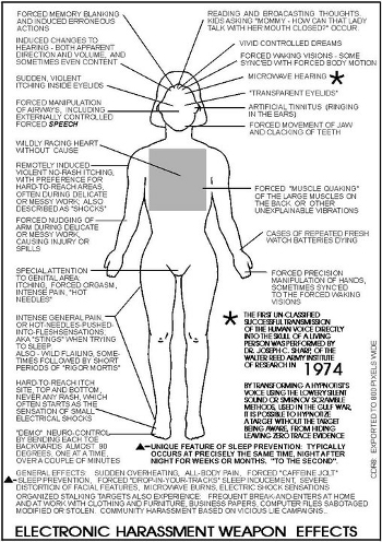 Electronic Weapon Harassment Effects 1