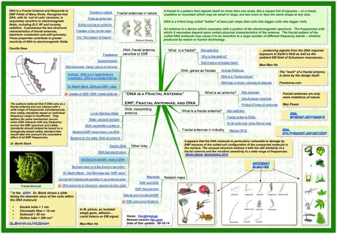 DNA, EMF explanation