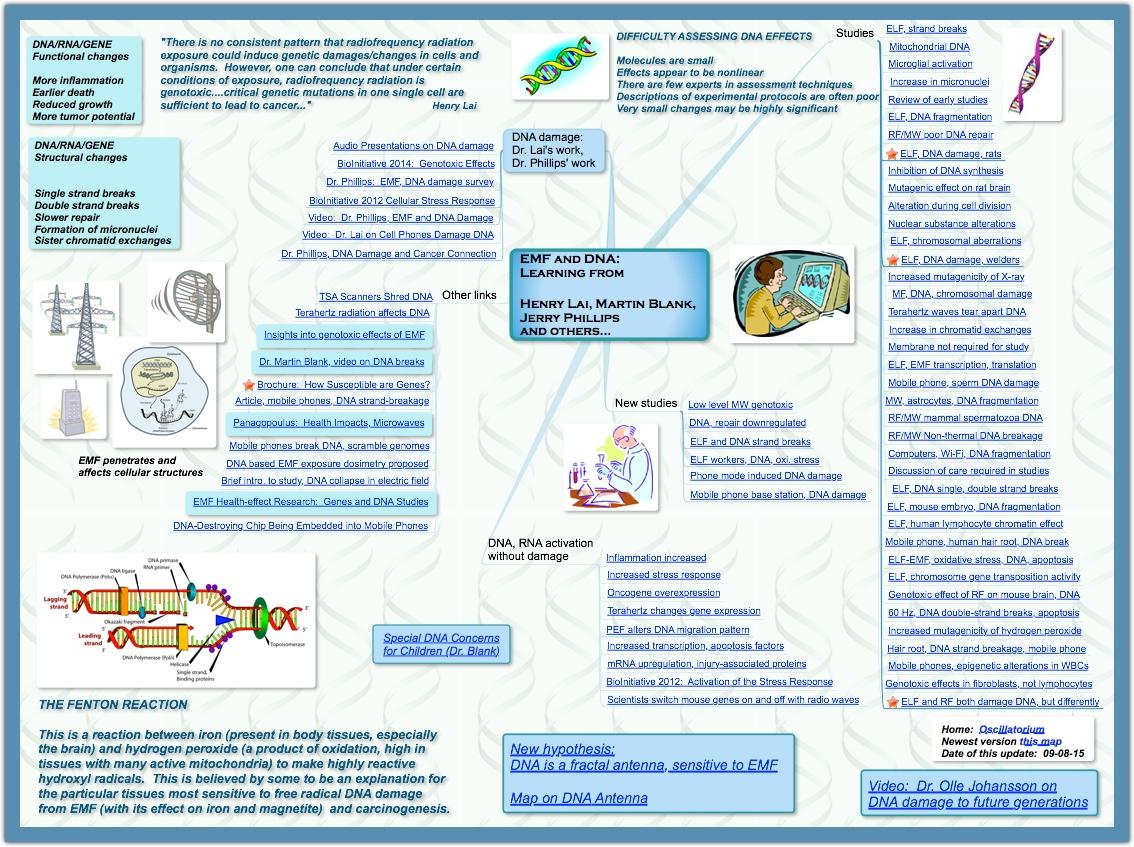 DNA FRactal 2