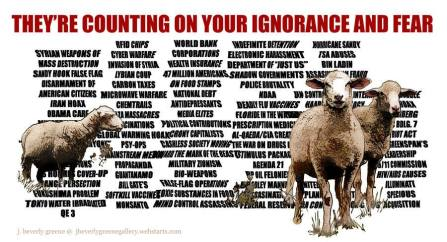 counting on your ignorance