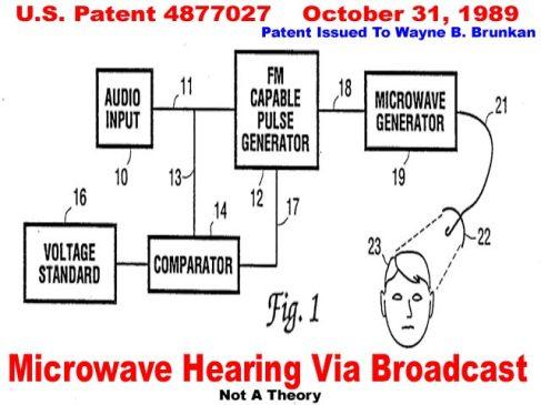 Brunkan_Microwave_Broadcast